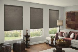 cellular-shades winter window insulation
